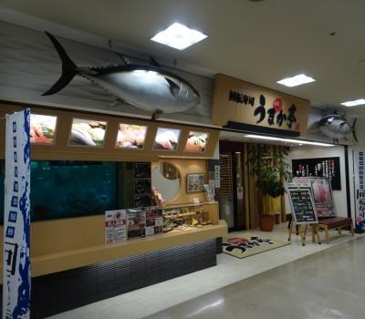 【駅チカ寿司】福島駅:うまか亭 福島駅ピボット店