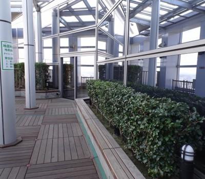 【トレインビュースポット】AER 展望テラス 仙台